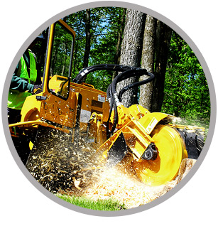Global Machinery Sales Rayco Stump Grinders