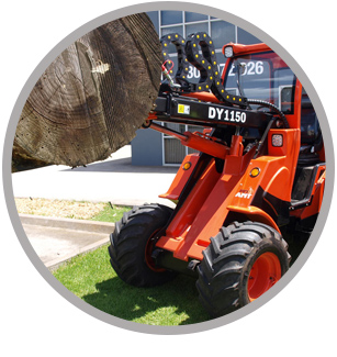 Global Machinery Sales Angry Ant Mini Loaders