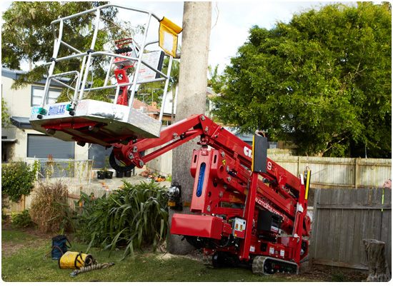 Global Machinery Sales CMC S19E Arbor Pro Spider Lift
