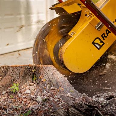 Rayco RG165T Stump Grinder